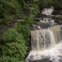 Waterfall Week Day 2: Ricketts Glen West