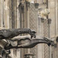 Notre Dame Gargoyles and Grotesques