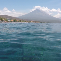 Amed Diving Videos